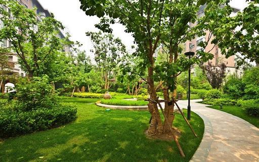 园林绿化 (6)
